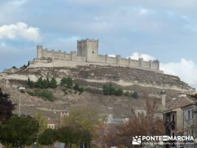 Visita enológica a Peñafiel – Ribera del Duero; excursiones comunidad de madrid